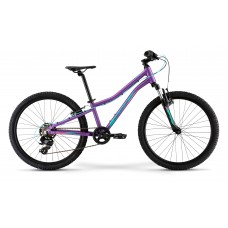 Подростковый велосипед  Merida MATTS J. 24  ECO (2021)