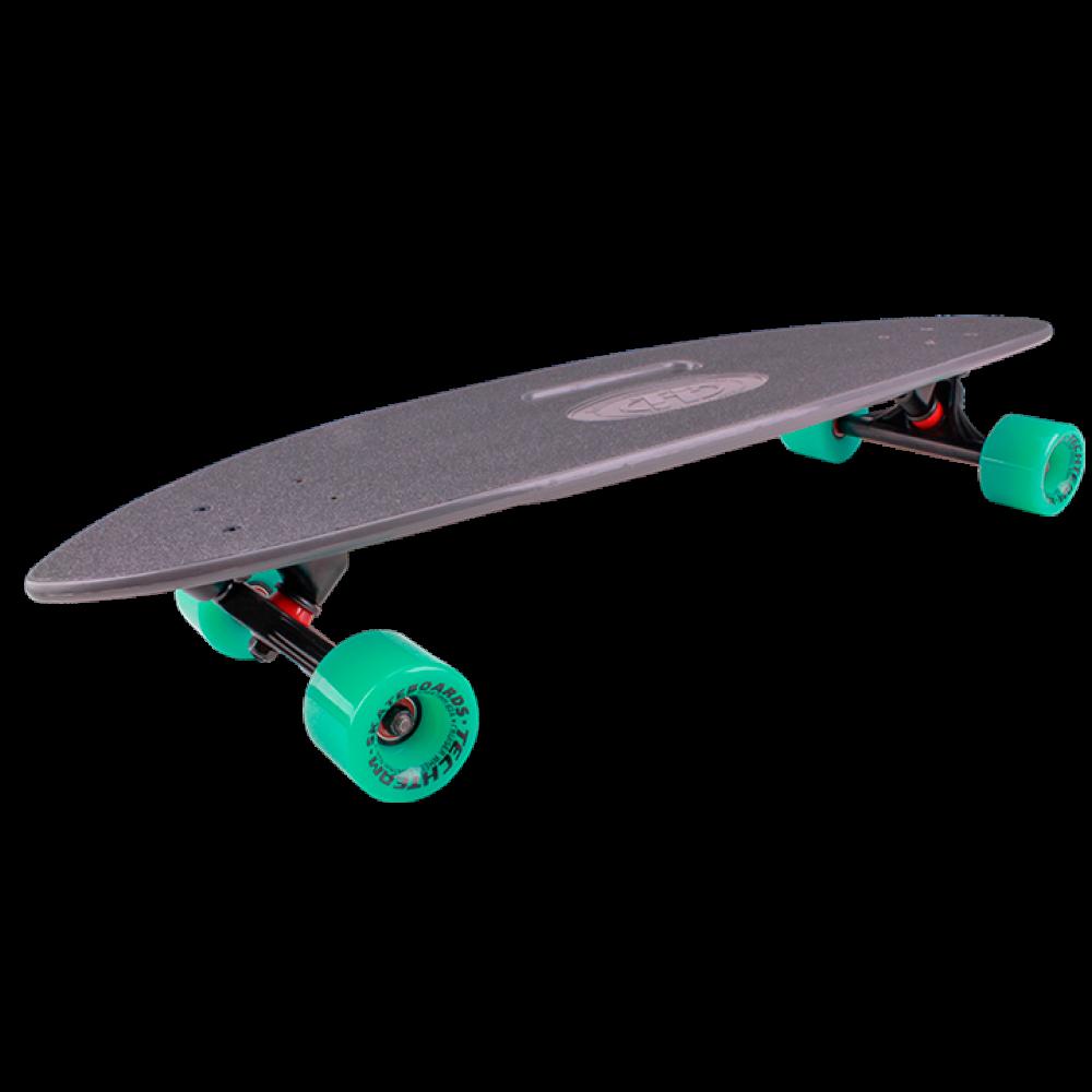 Скейтборд пластиковый Fishboard 31 TSL-409