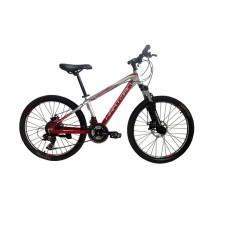 Подростковый велосипед Lucky (V-br) 24