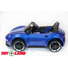 Porsche Sport QLS 8988 синий (краска)